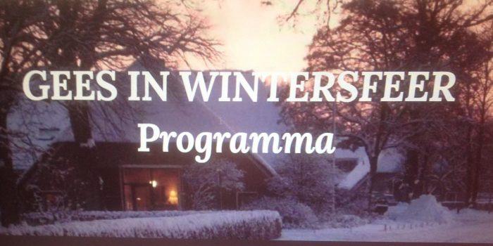 Gees in wintersfeer